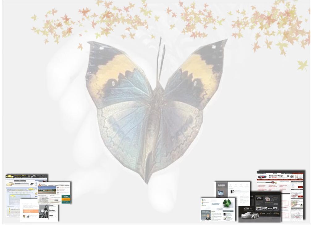 Europiezas.com le diseña su Web