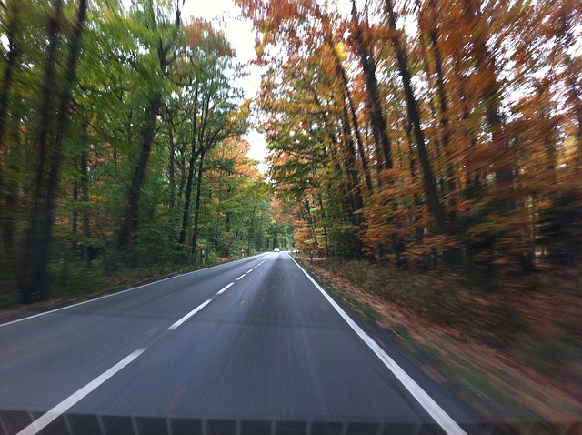 coche otoño