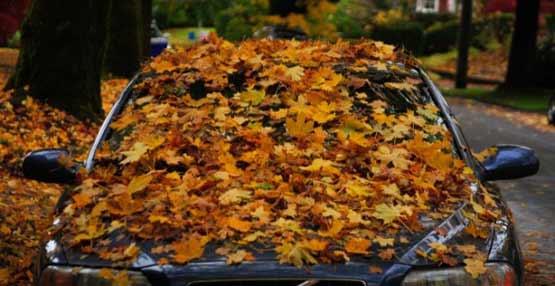 coche a punto en otoño